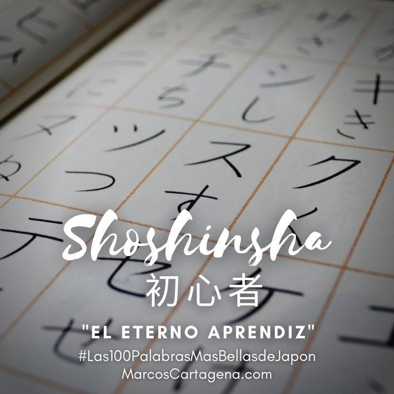 Shoshinsha